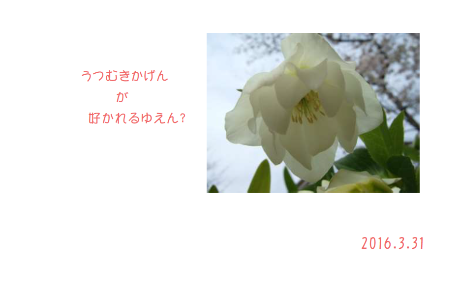 Spring2016-2