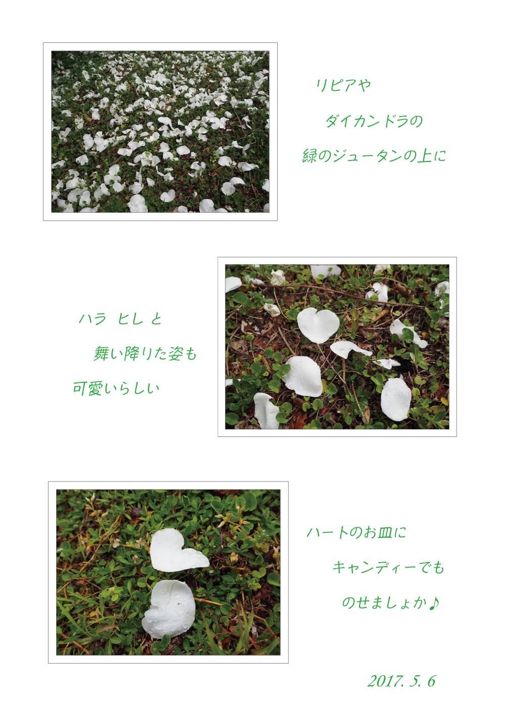薫風の季節♪